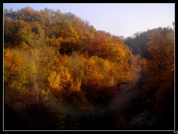 automne_1