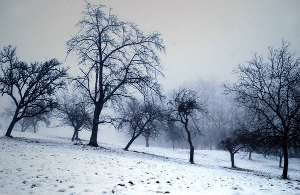 deviantart winter_1