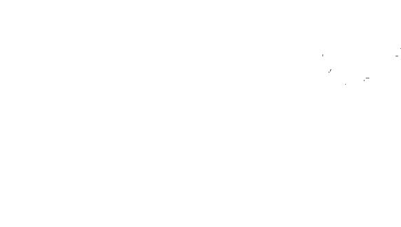Celine Ducrettet